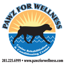Pawz for Wellness / Canine Conditioning & Rehabilitation